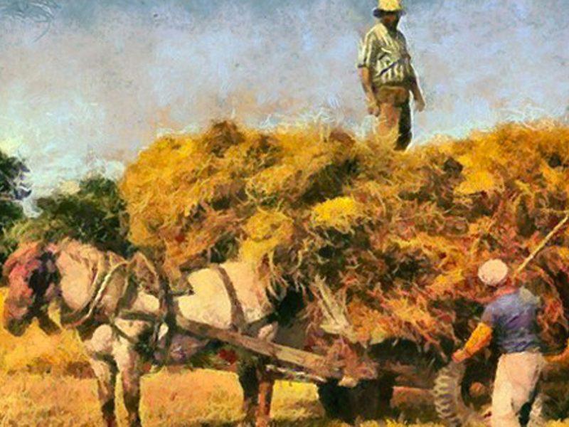 LA VERTU DU TRAVAIL : un mythe à réinventer